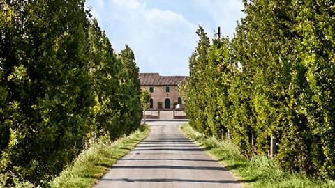 Coopstartup Farmability fa tappa in provincia di Ferrara