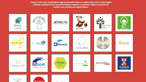 Le startup cooperative: una scheda per raccontarle