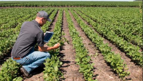 """Coopstartup al Seminario su """"Auto imprenditoria nel settore agroalimentare"""" a La Sapienza"""